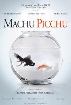 Machu Picchu on-line gratuito