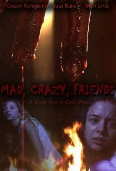 Mad, Crazy, Friends on-line gratuito
