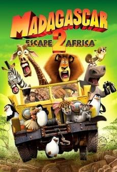 Ver película Madagascar 2