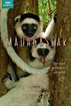 Watch Madagascar online stream