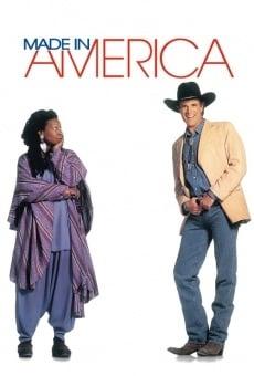 Hecho en America online