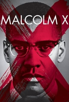 Malcolm X online streaming