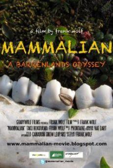 Ver película Mammalian
