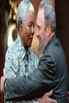 Mandela y Fidel online kostenlos