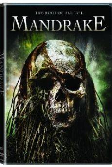 Mandrake online gratis