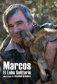 Marcos, el lobo solitario online