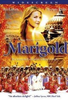 Ver película Marigold