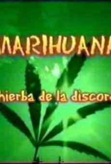 Marihuana, la hierba de la discordia on-line gratuito