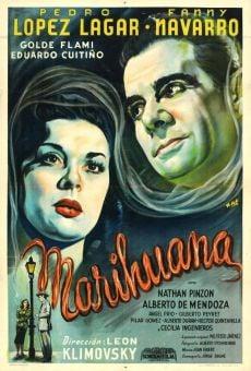 Ver película Marihuana
