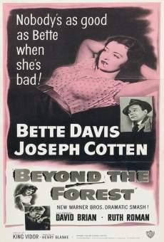 Ver película Más allá del bosque