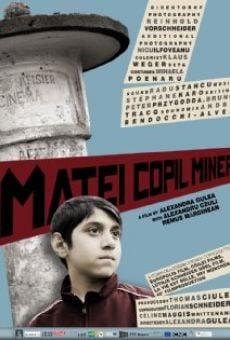 Ver película Matei Copil Miner