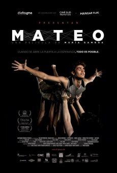 Mateo online