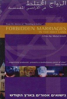 Matrimonios prohibidos en la tierra prometida online
