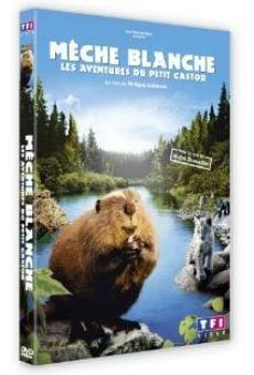Película: Mechón Blanco: las aventuras del pequeño castor