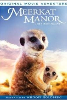 Meerkat Manor: The Story Begins online free