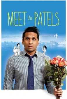Ver película Meet the Patels