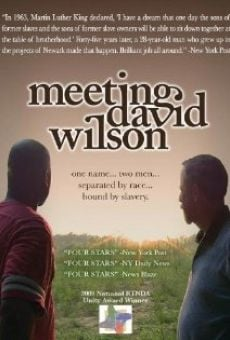 Película: Meeting David Wilson