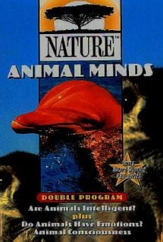 Animal Minds online streaming