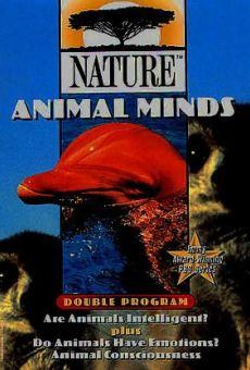 Animal Minds on-line gratuito