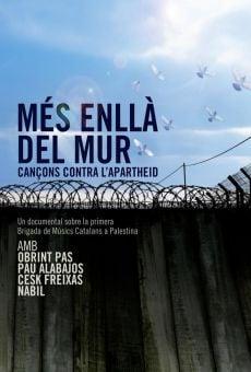 Ver película Més enllà del mur. Cançons contra l'Apartheid