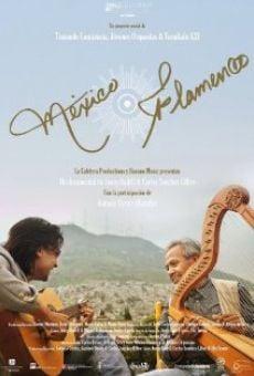 Ver película México Flamenco
