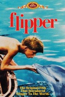 Flipper online