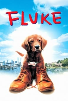 Ver película Mi amigo Fluke