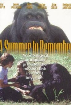 A Summer to Remember en ligne gratuit