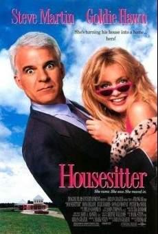 Ver película Mi casa es tu casa