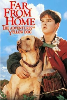 Far from Home: The Adventures of Yellow Dog on-line gratuito
