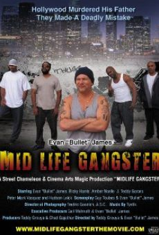 Ver película Mid Life Gangster