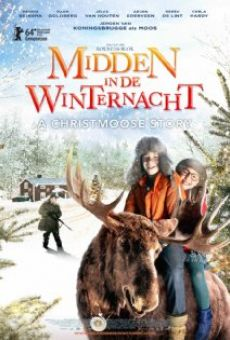 Midden in De Winternacht on-line gratuito