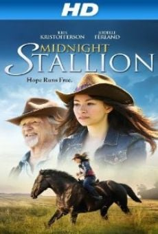 Ver película Midnight Stallion