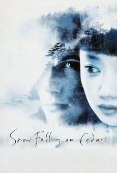 Snow Falling on Cedars on-line gratuito