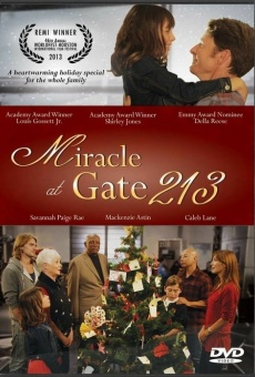 Ver película Miracle at Gate 213