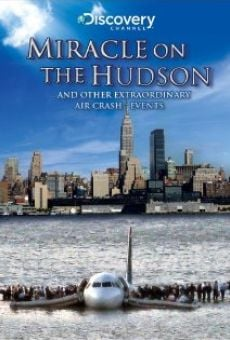 Ver película Miracle of the Hudson Plane Crash