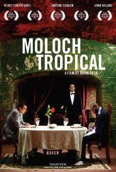 Moloch tropical gratis