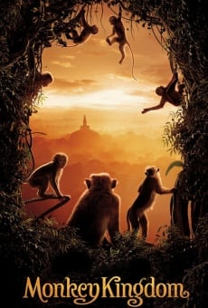 Ver película Monkey Kingdom