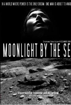 Ver película Luz de luna junto al mar
