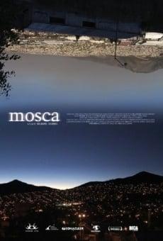 Ver película Mosca
