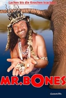Mr. Bones online