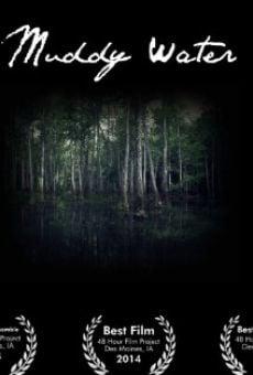Ver película Muddy Water