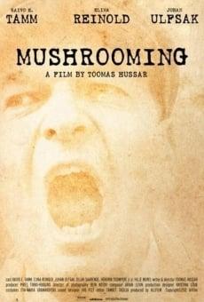 Ver película Mushrooming