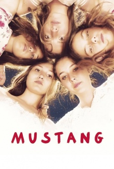 Ver película Mustang: belleza salvaje
