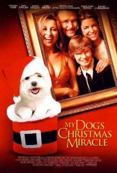 Ver película My Dog's Christmas Miracle