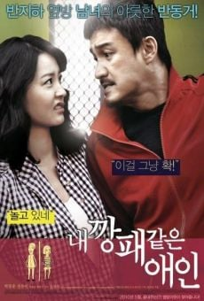 Nae Kkangpae Kateun Aein (My Girlfriend as a Gangster) (My Dear Desperado) online