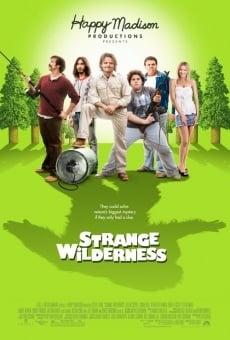 strange wilderness 2008 film deutsch. Black Bedroom Furniture Sets. Home Design Ideas