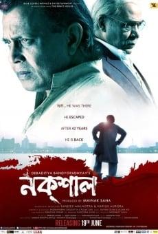 Ver película Naxal