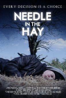 Watch Needle in the Hay online stream