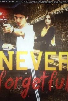 Ver película Nunca olvido